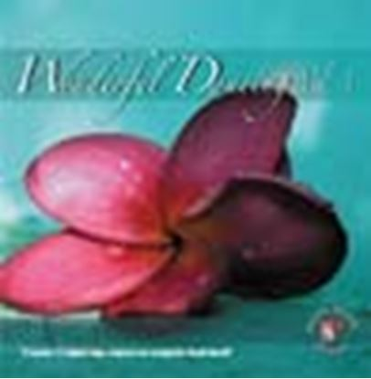 Picture of Wonderful Dancing Vol.3 (CD)